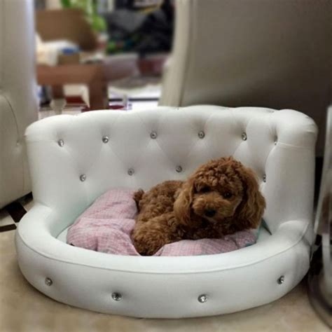 beds for puppies how to train your puppy to sleep in his own bed quora