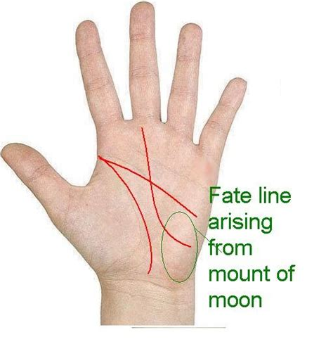 divination palmistry analyzing the mounts palmistry your future fate line arises from the
