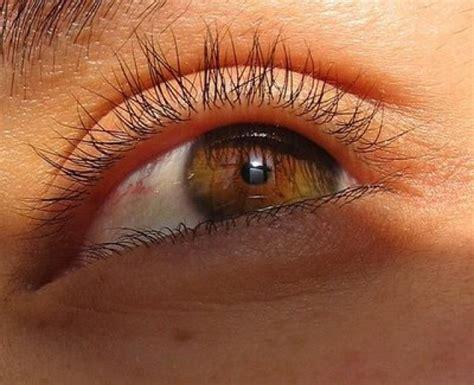 imagenes ojos pardos ranking de 191 que color de ojos os parece mas bonito