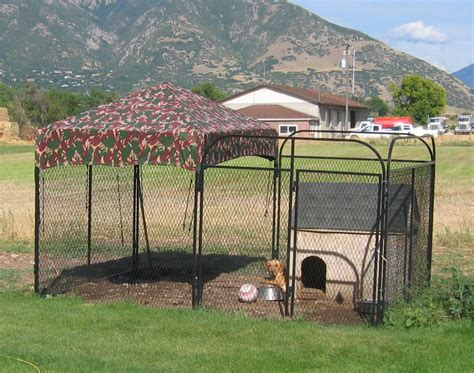 large outdoor pen outside kennels large outdoor indoor cage 10x10x6 pets animals puppy pen box buy