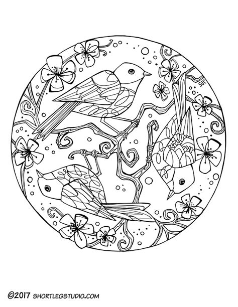 bird mandala coloring pages meditative coloring sheets leg studio