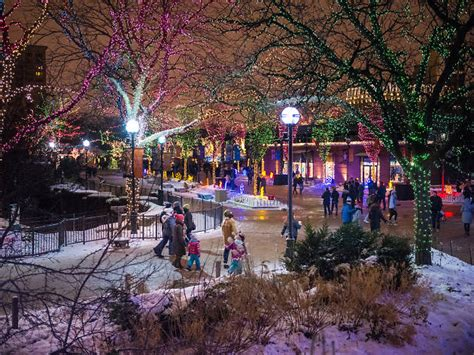 lincoln park zoo lights twinkling photos from zoolights at lincoln park zoo