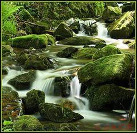 imagenes relajantes con sonido v 237 deo de relajaci 243 n con los sonidos del agua sonido de