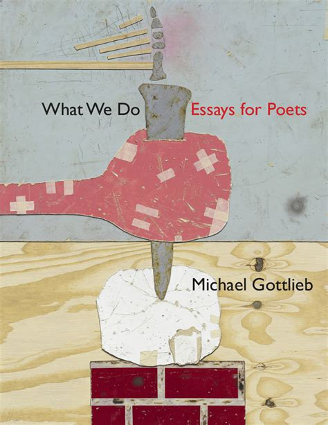 we count it all essays books book for michael gottlieb s what we do essays for