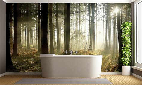 forest at dusk wall mural forest wallpaper
