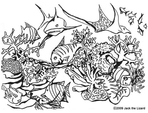 hard coloring pages ocean sea animals hard coloring pages to print coloring pages
