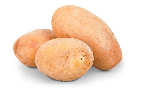 potato png image pngpix