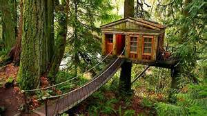 14 amazing tree houses that will bring out your inner