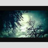 Music Piano Wallpaper Widescreen | 480 x 360 jpeg 17kB