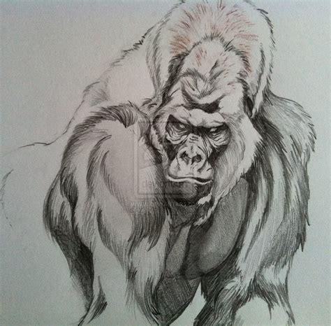 silverback tattoo silverback gorilla by dazamir13 on deviantart