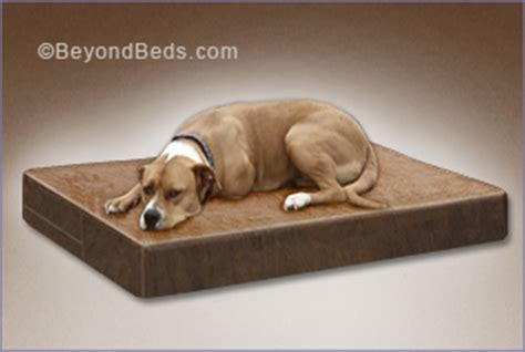 rubber dog bed sized organic mattresses from the market leader the