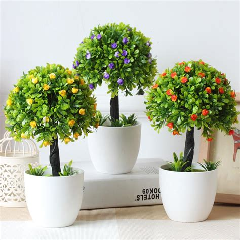 home decorative plants most beautiful decorative house plants creative home