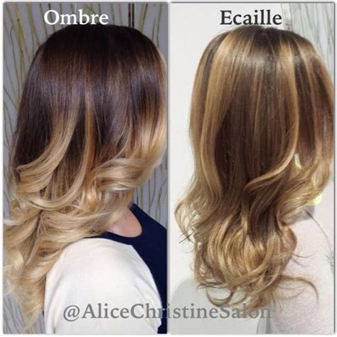 écaille new hairstyle 1000 images about balayages babylights 201 cailles de tortue