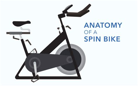 clip on fan for spin bike spinning 101 and the anatomy of a spin bike infographic