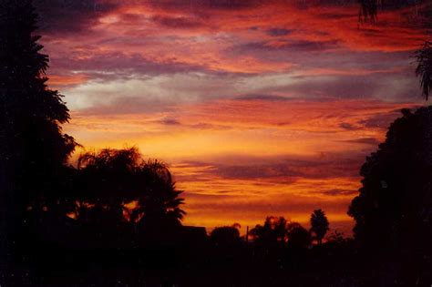 backyard sunset archives new floridians