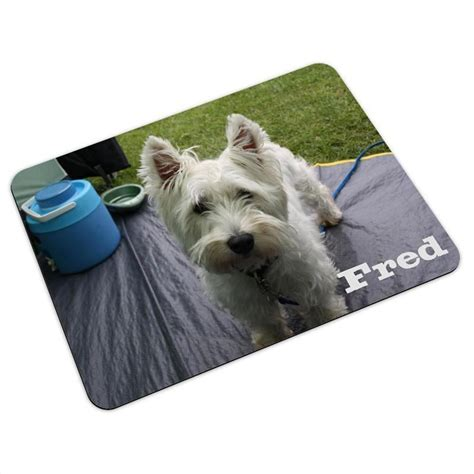 Mats For Dogs by Pet Mats Personalised With Photos And Text By Bags Of