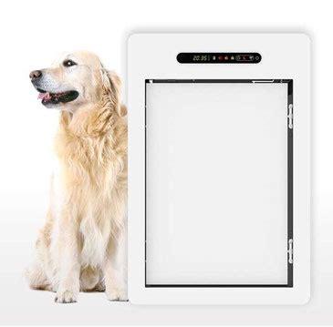 porte automatique pour chien porte automatique chati 232 res automatique trappe pour