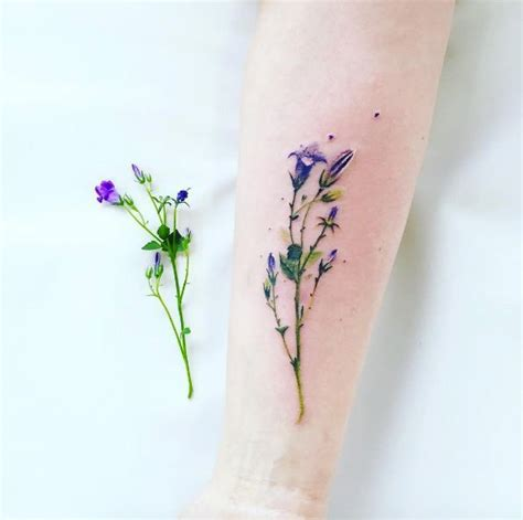 watercolor tattoo wildflowers 17 best ideas about wildflower on plant