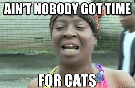Nobody Got Time For That Meme - ain t nobody got time for cats nobody got time for that