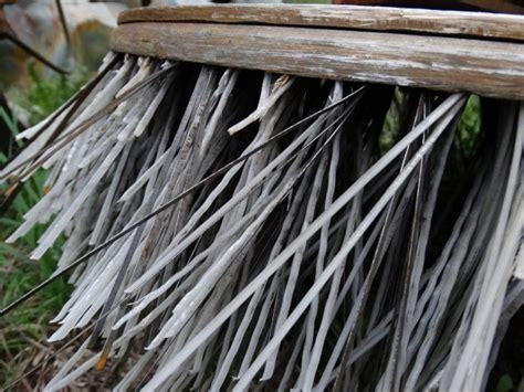 unkraut in pflasterfugen entfernen 7 einfache m 246 glichkeiten um pflasterfugen unkraut zu