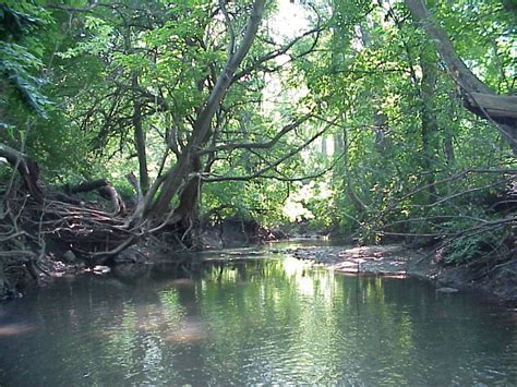 the dog house lafayette indiana west lafayette wooded land for sale in tippecanoe county indiana with water frontage