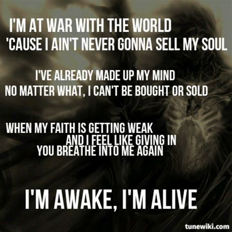 lyrics cause i about my 25 best ideas about skillet lyrics on skillet