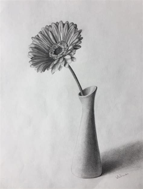 Pencil Drawing Flower Vase by 80 Gerbera Flower In A Vase Still Sketch Original Graphite Pencil Drawing By