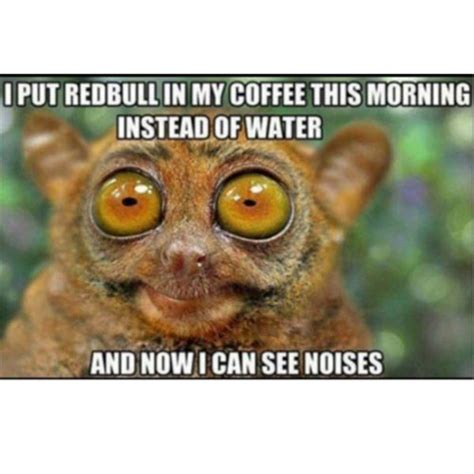 Too Much Coffee Meme - 40 coffee memes all caffeine addicts will relate to