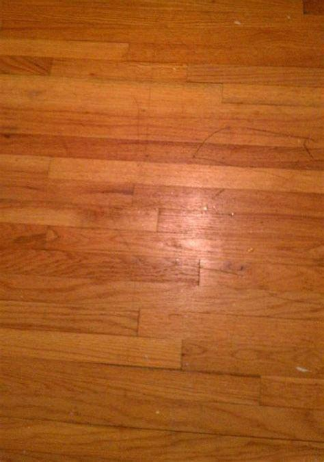 VCT   Wood   Slate Floor Cleaning   ServiceMaster Clean