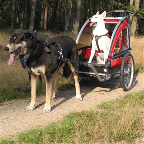 hunde wagen set f 252 r hundewagen komplett fahrradanh 228 nger