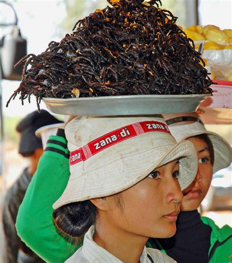 cambogia turisti per caso cambogia il pranzo 232 servito viaggi vacanze e turismo