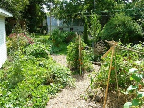 backyard permaculture design backyard permaculture garden with gravels the advantages