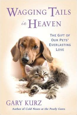 pets in heaven gift for owners quotes about cats and heaven quotesgram