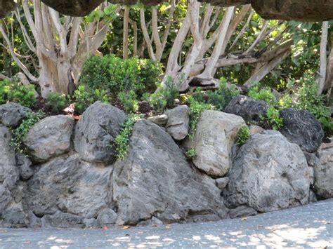 Rock Wall Garden 24 Rock Wall Garden Designs Decorating Ideas Design Trends Premium Psd Vector Downloads