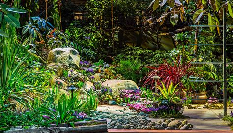 seattle flower garden show northwest flower garden show vancouver bc to seattle