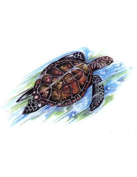 tattoo flash turtle sea turtle tattoo free design ideas