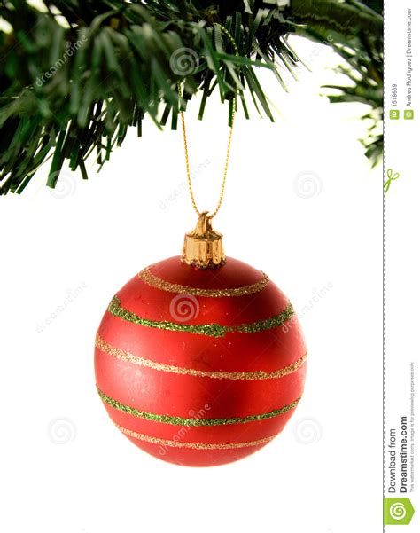 bauble in red hanging from christmas tree stock image