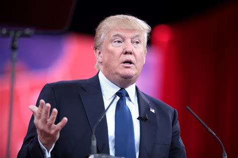 donald trump life biography who is donald trump life and biography of donald trump
