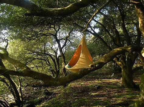 Tree Hanging Hammock cozy cacoon is part hammock part tree tent all treehugger