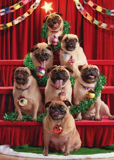 pug christmas tree pug tree avanti humorous card 12615743746 ebay