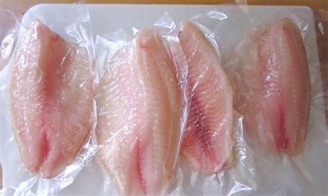la tilapia se ha convertido en el quinto pescado ms consumido en los estas son las razones por las que nunca debes comer tilapia