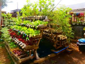 kitchen gardening ideas alleviation of malnutrition and hunger by small scale