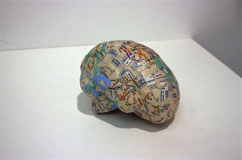 How To Make A Paper Mache Brain - brodmann s subways buntaine