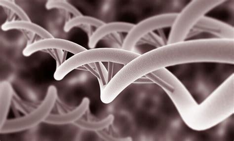 illumina farmaco illumina claims new sequencer transcribes 18 000 genomes