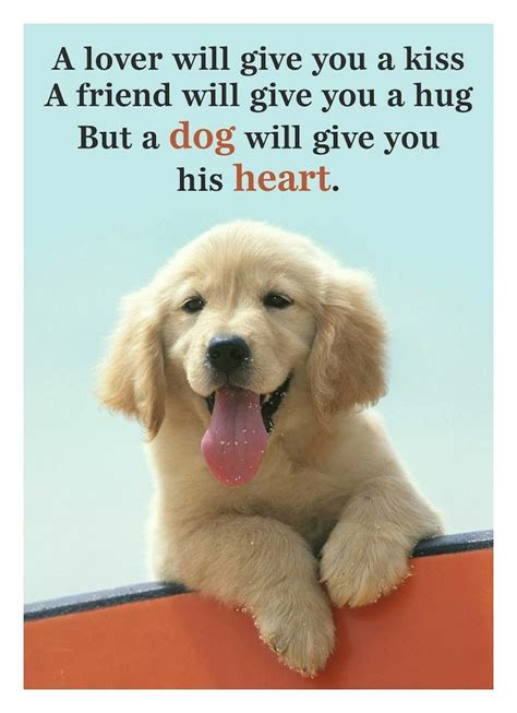 cute dog quotes ideas  pinterest sweet