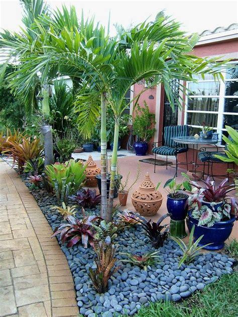 giardini con palme giardino con le palme 20 idee per un tocco tropicale
