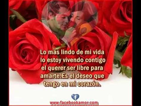 las mas bellas imágenes de amor frases con flores de rosas para el amor youtube