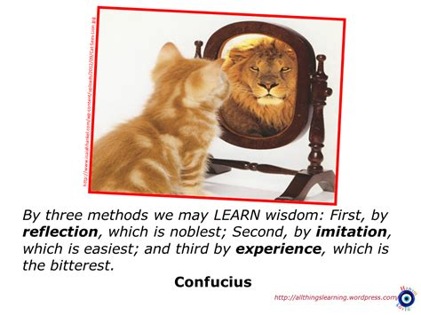 reflective savvy allthingslearning