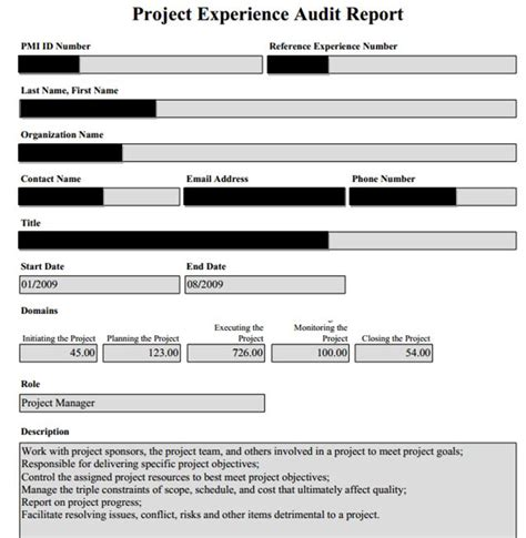 How To Pass A Pmp Audit Successfully Examspm Com Pmp Application Template