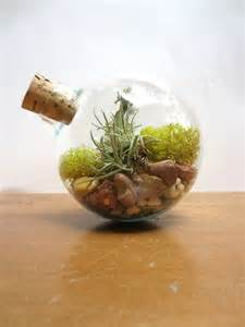 Small Desktop Terrarium In Balance Miniature Desktop Garden Unique By